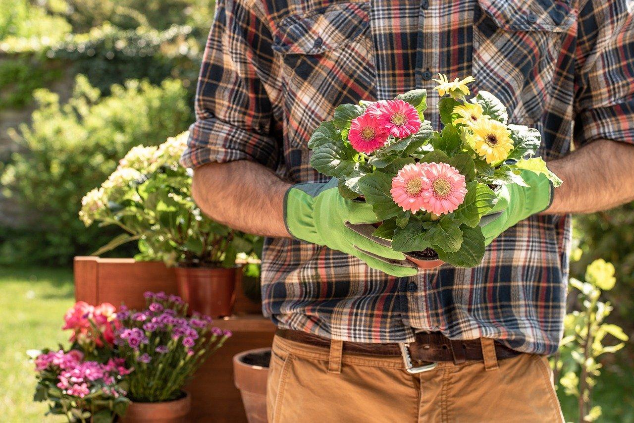 Best Work Gloves for Landscaping