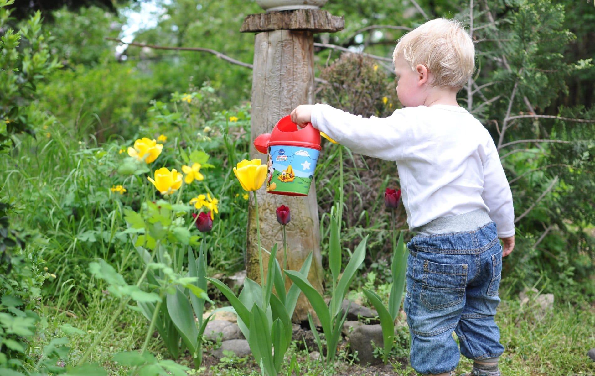8 Best Gardening Gloves for Toddlers