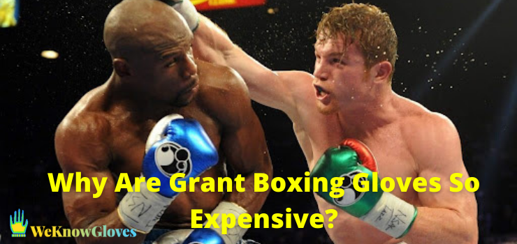 Why Are Grant Boxing Gloves So Expensive
